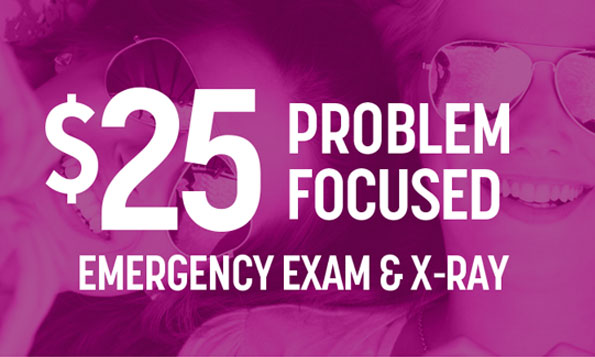 emergency exam and xray